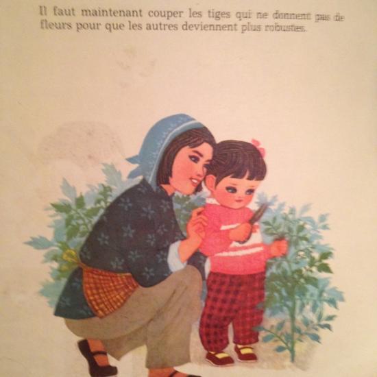 A la maternelle - Faut il couper les fleurs fanees des hortensias ...